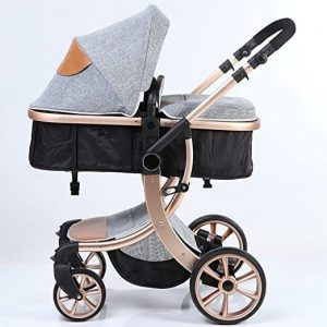 The Best Most Premium & Expensive Luxury Strollers for 2020